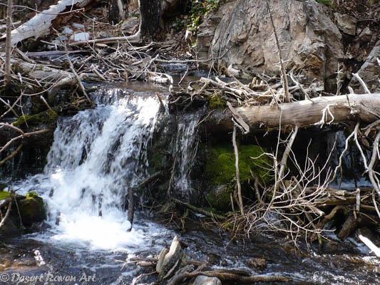 A nice day hiking near the waterfall