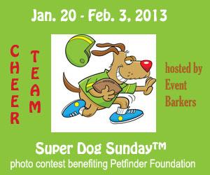 Super dog Sunday