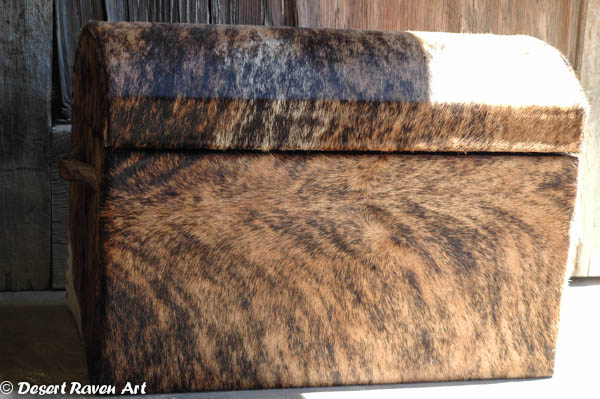 arstsy fartsy tuesday,cowhide box
