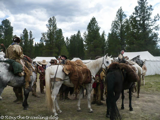 pacific primitive mountain man rendezvous