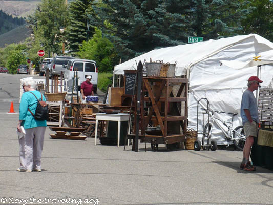Artsy Fartsy Tuesday - Sun Valley art show