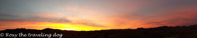 watching the sunrise, desert sunrise, panorama photo