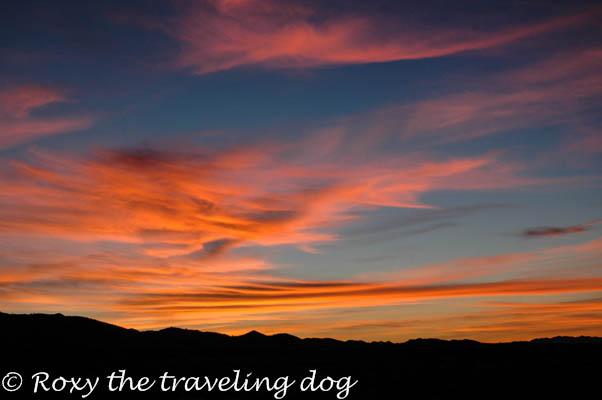 Artsy Fartsy Tuesday desert sunrise