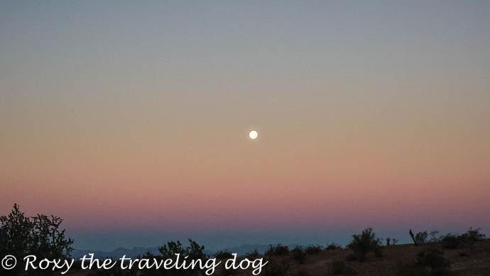 moon setting in the desert