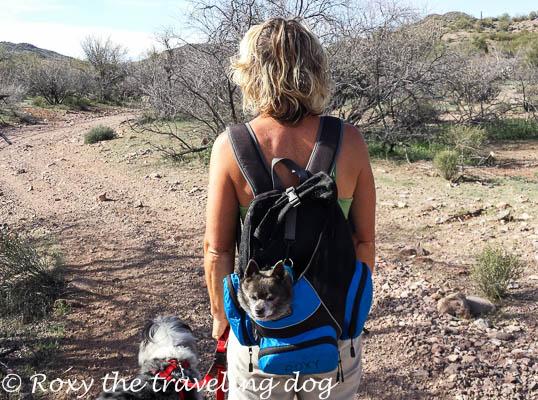 Boondocking near Wickenburg, Arizona