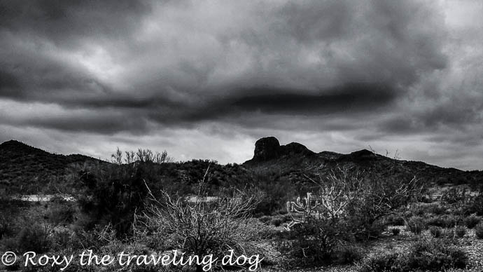 Desert storms in black and white