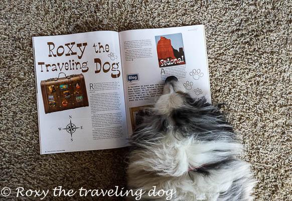 We're in a magazine! High Desert Dog