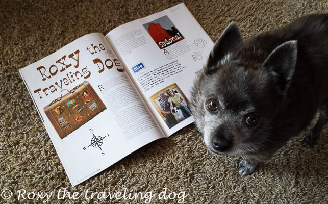 We're in a magazine! high desert dog