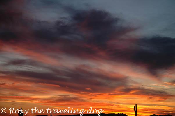 Sunset, desert