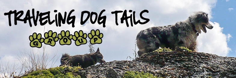 Traveling dog tails facebook group