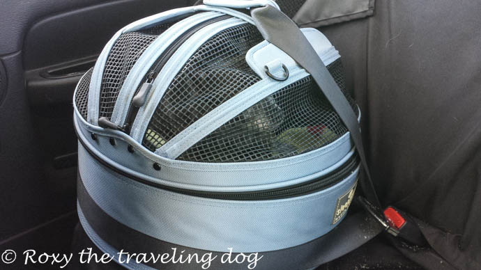 Sleepypod review how to have the safest traveling dogs