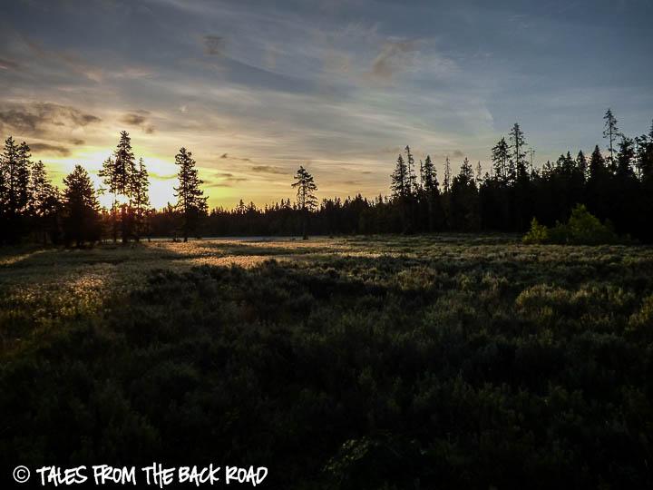 Sunrise over a mountain meadow