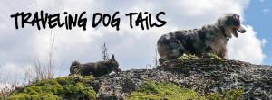 Dog tails google