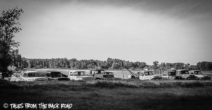 Vintage trucks in black and white