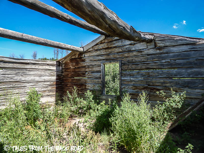 An old Wyoming homestead