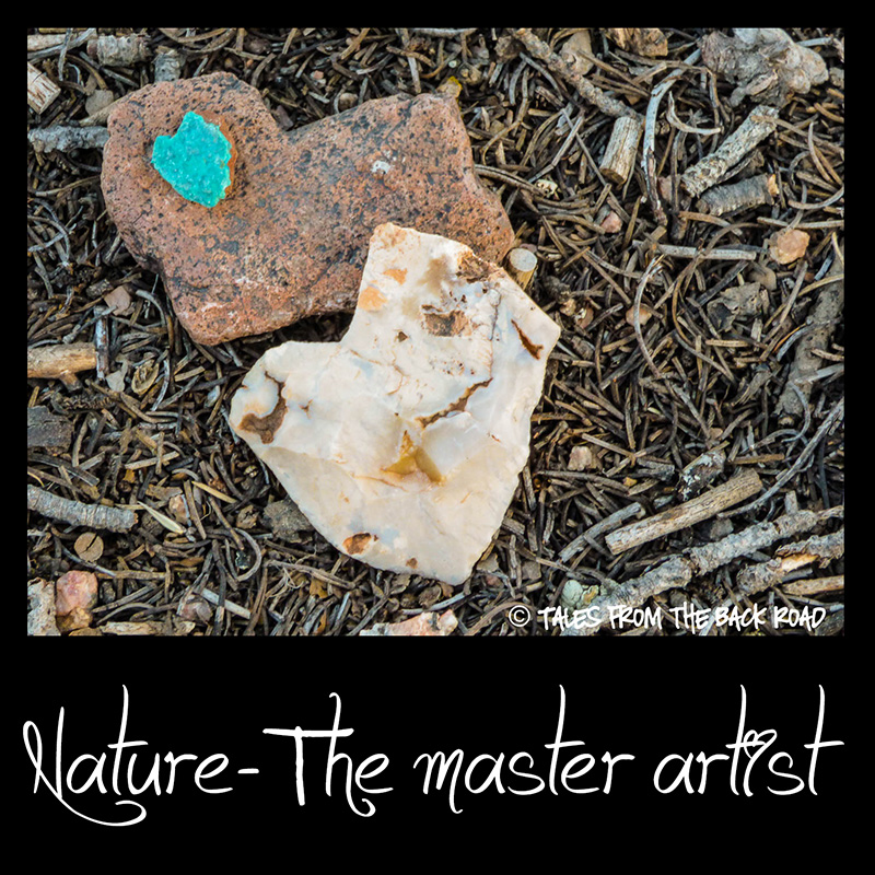 Nature - The master artist