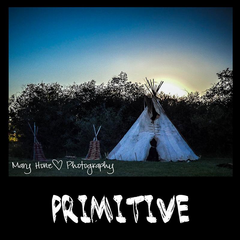 Primitive tipi