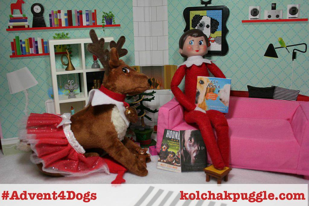 Advent 4 dogs