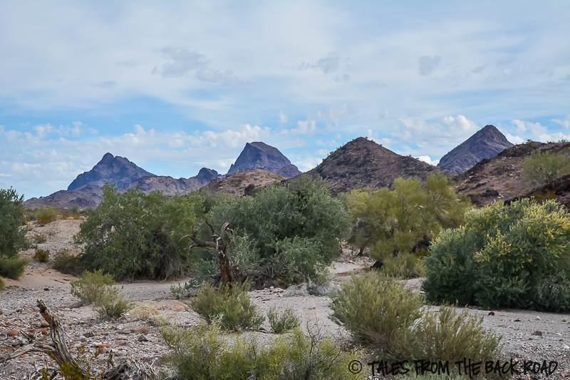 Desert mountains Quartzsite Arizona