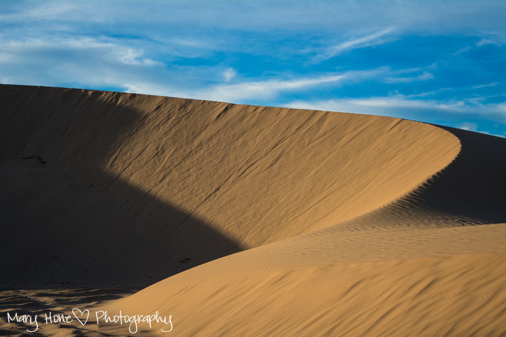 A fun evening at the sand dunes, Imperial sand dunes