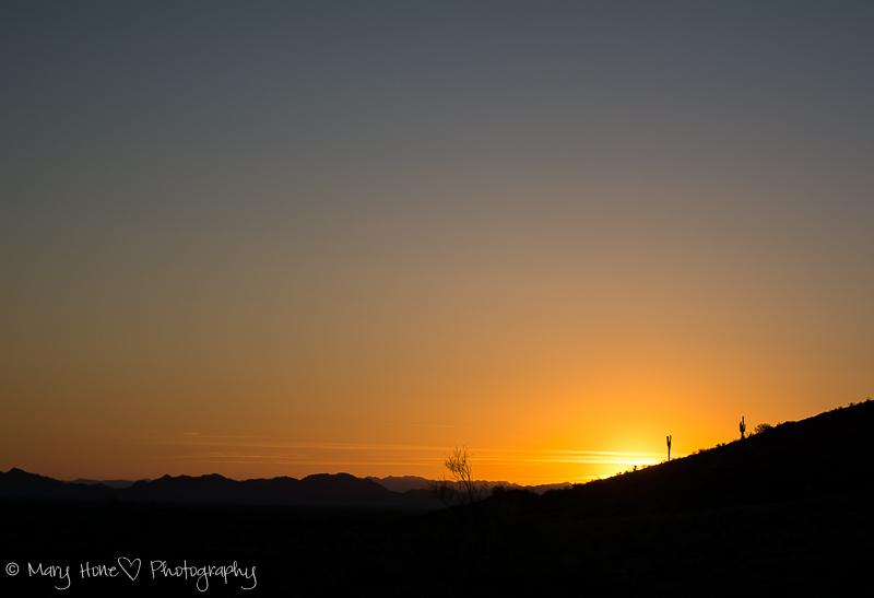 desert sky sunset in the desert