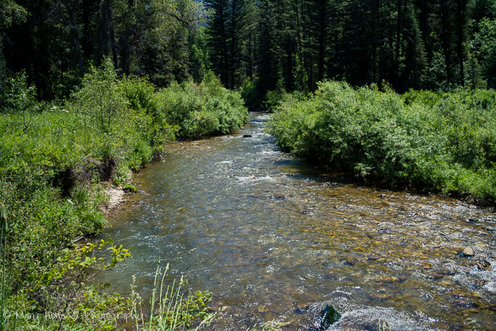 Hiking Big Elk Creek in Idaho