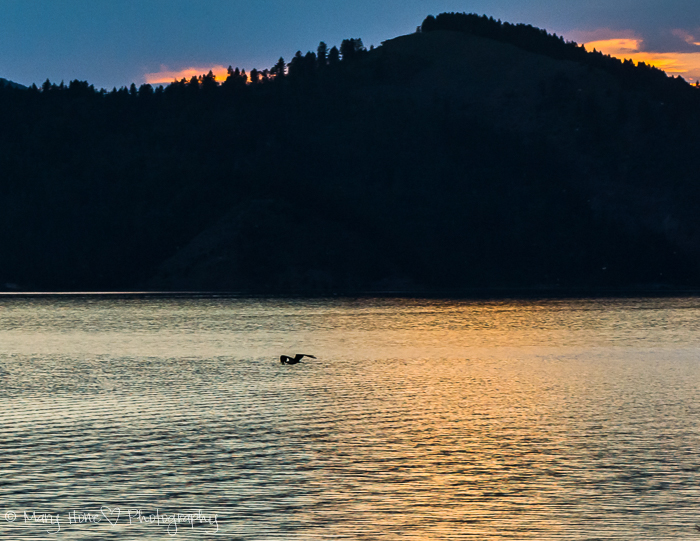 Sunset over the lake, Palisades Idaho
