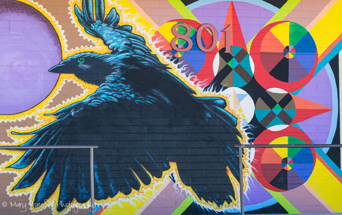 Roy G Biv, Raven