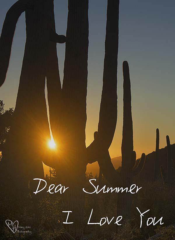Dear Summer, I Love You