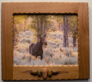 8 x 10 Custom framed photo Morning moose_