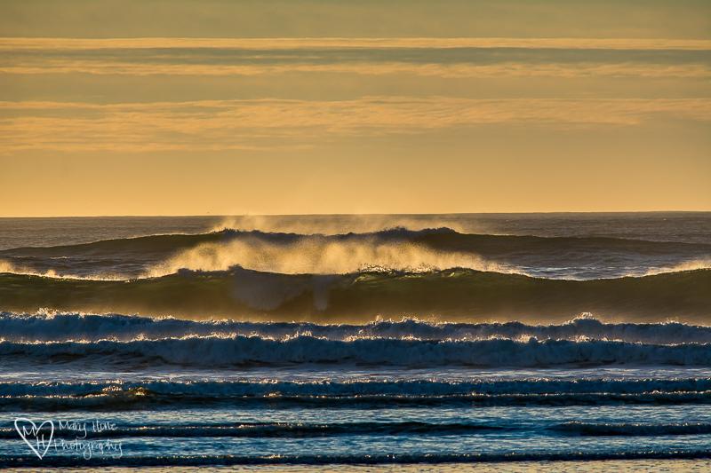 Newport, Oregon. We begin our trip down the Oregon coast