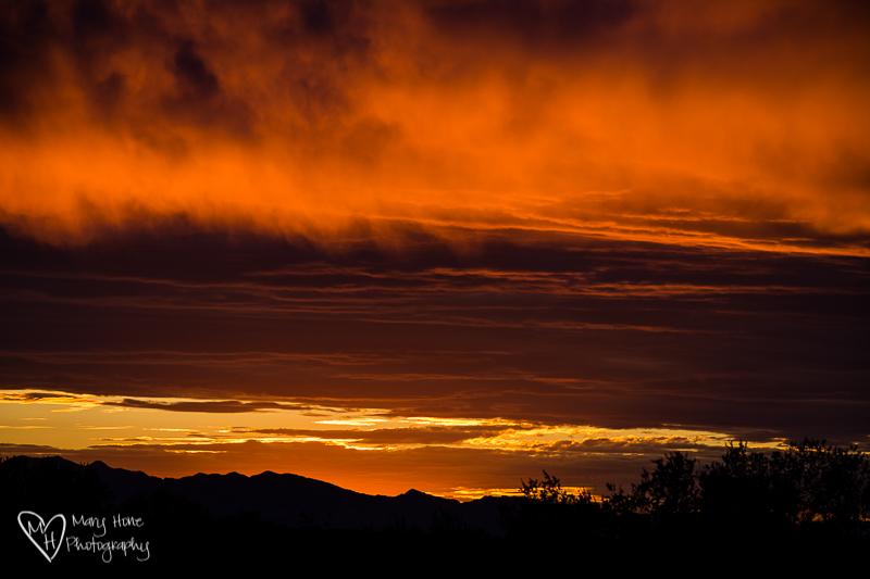 The rhythm of the desert, desert sunset