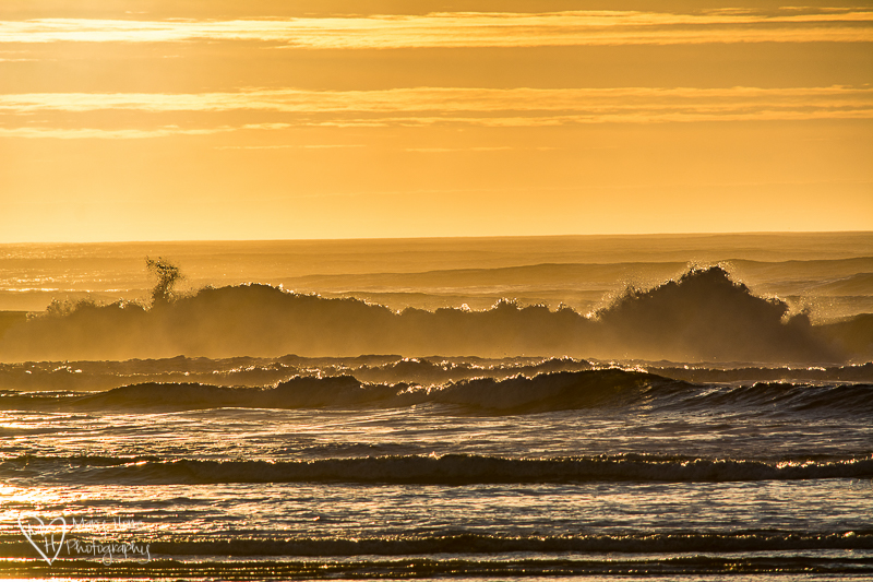 Weightless waves. oregon coast