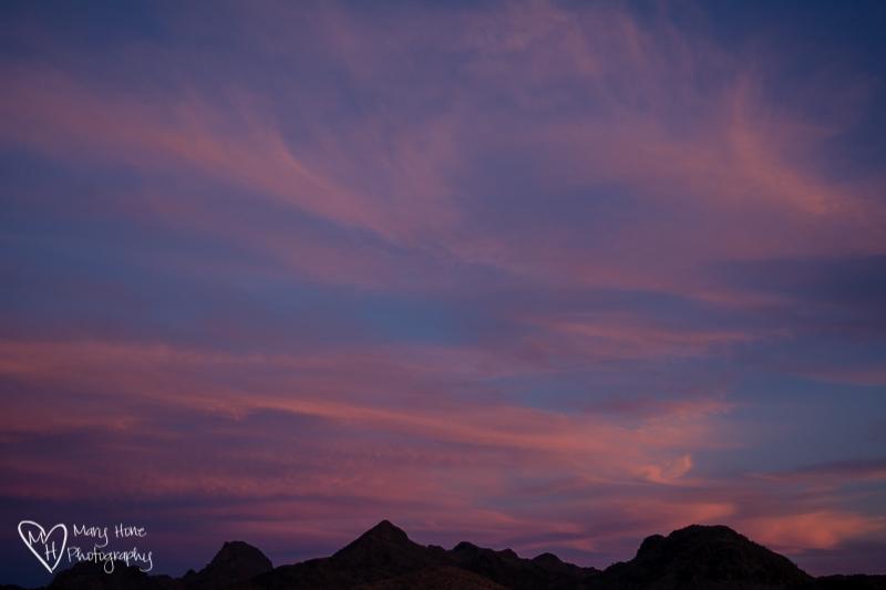 Creatures of Habit, arizona sunset