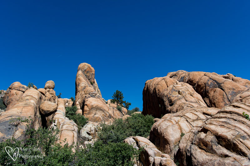 Short hikes around Prescott, Arizona. Constellation trails
