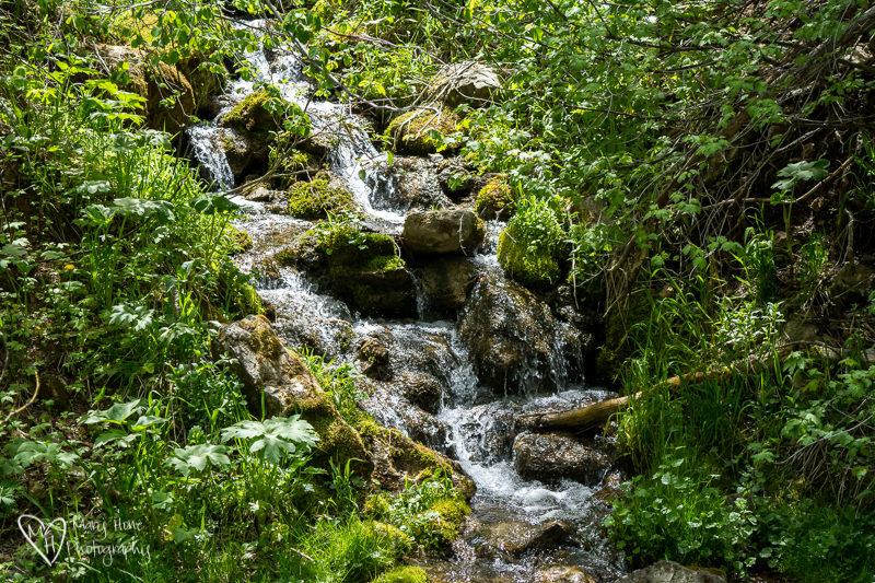 Waterfalls are so Beautiful