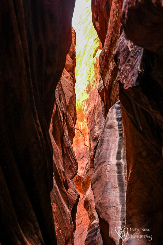 Narrow Slot Canyons. Buckskin gulch