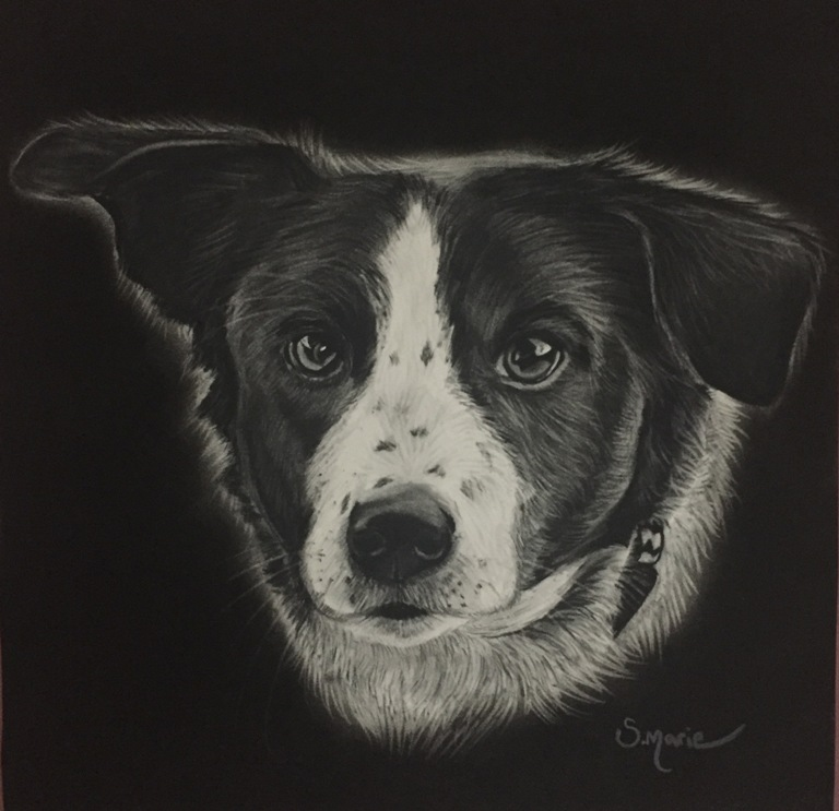 Pet portrait artistry