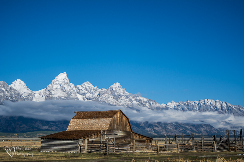 Moulton Barn in Grand Teton