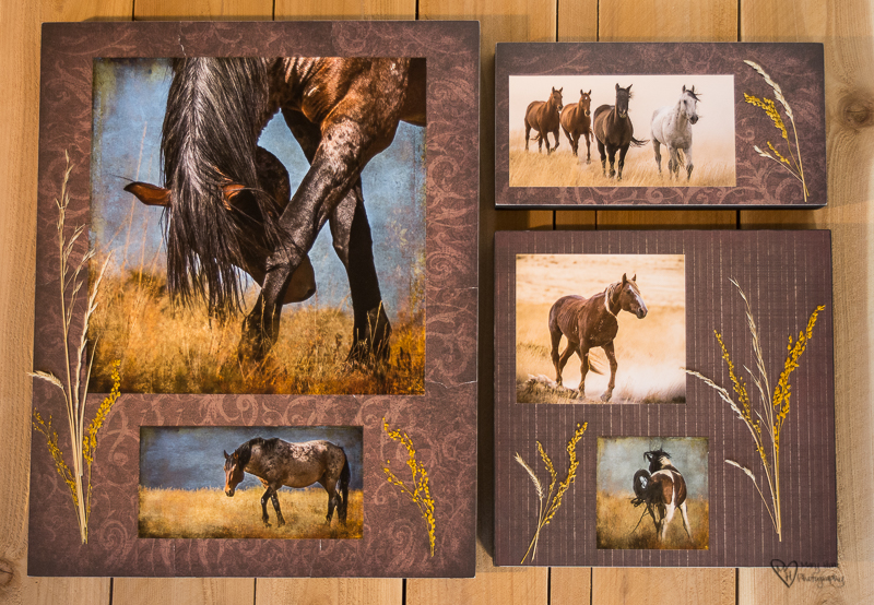 Mixed Media Photography, wild horses, art resin