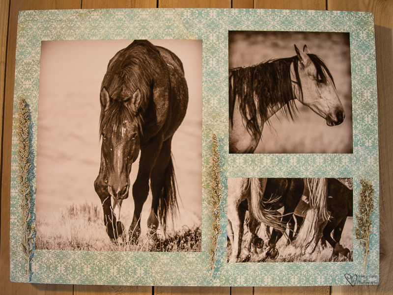 Mixed Media Photography, collage, wild horses