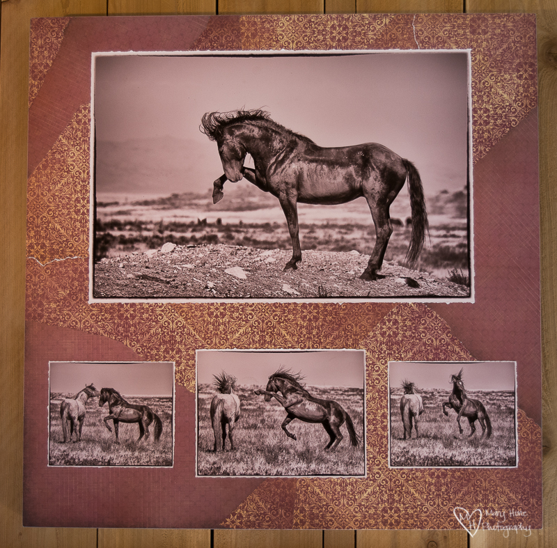 Mixed Media Photography collage with wild horses