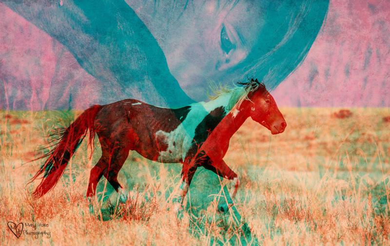 double exposure wild horses