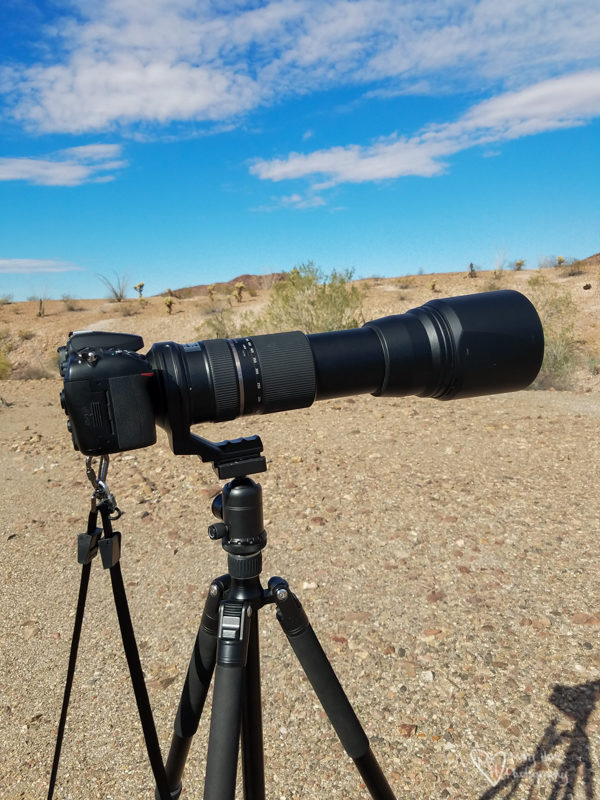 tamron lens and nikon