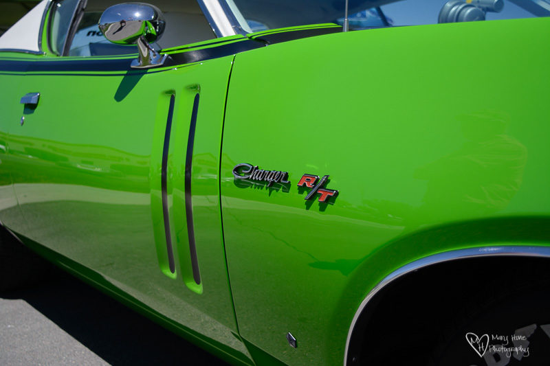 old green charger