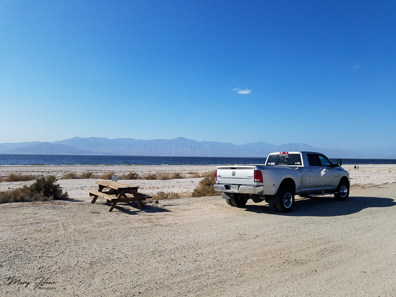 My visit to the salton sea