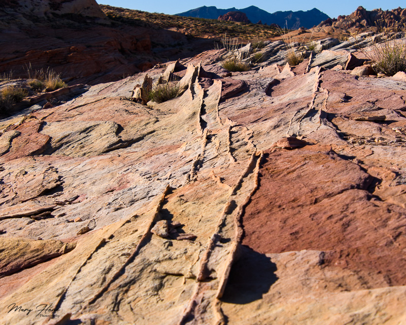 rock formations in valley of fire