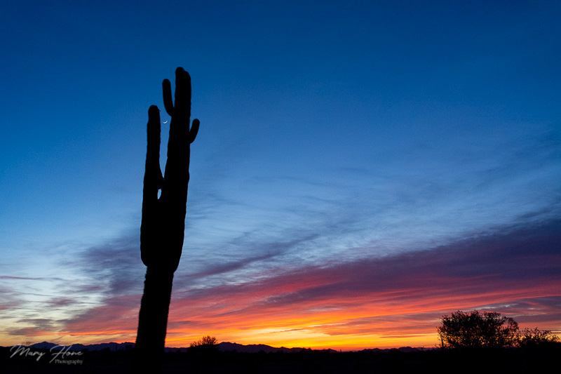 from clicking to creating arizona sunset