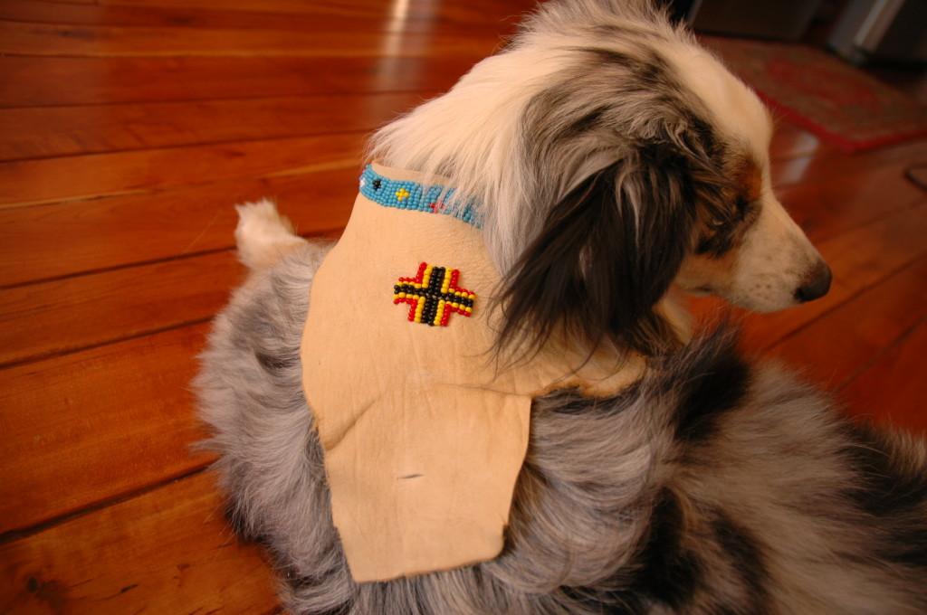 beaded leather dog jacket