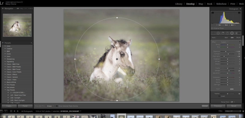 From Clicking to Creating-Using the Radial Filter in LR
